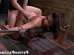 Blowjob, BDSM, Bondage, Big Tits