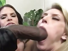 Babe, Big Boobs, Blowjob, Interracial