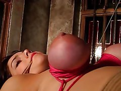 BDSM, Brunettes, Lingerie
